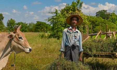 Un mundo, una salud: desafíos para la agricultura